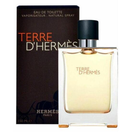 Hermes - Terre D Hermes (100ml) - EDT